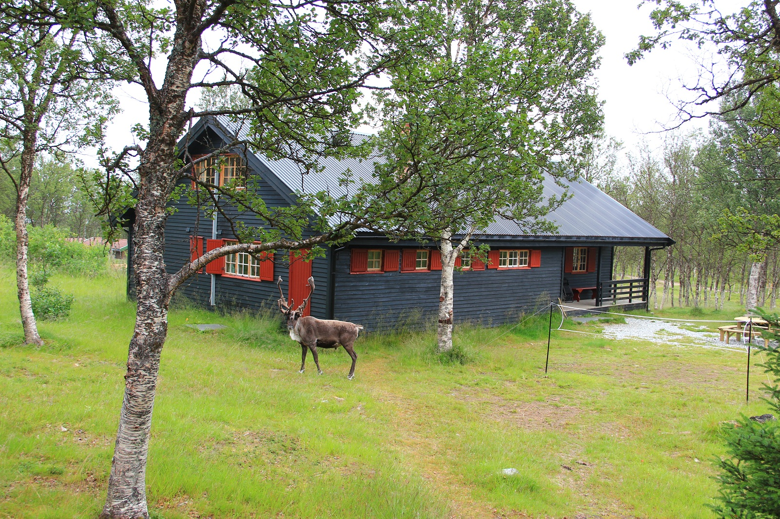 Tromso accommodation