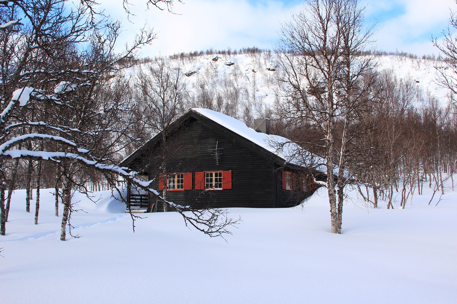 Artic Winter - Polar Cabin